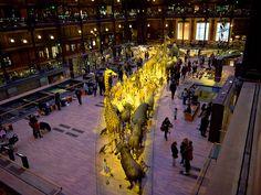Grande Galerie de l'Évolution. Musée national d'histoire naturelle Paris