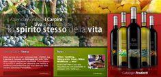 Cascina Carpini [intervista #TA13]