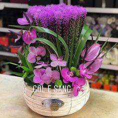Table Flowers, Diy Flowers, Flower Decorations, Orchid Centerpieces, Orchid Arrangements, Flower Arrangement, Frozen Rose, Artificial Orchids, Christmas Arrangements