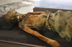 The male mummy found next to the ice maiden. The anthropologist and the kurgans | john hawks weblog