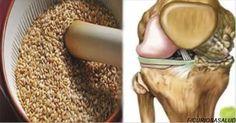 Las semillas que regeneran tendones y quitan el dolor de rodillas. Así se prepara – Curiosa Salud