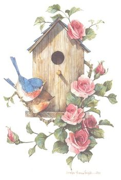 Cute birds, birdhouse, and roses, by Carolyn Shores Wright Ouvrages D'art, Bird Drawings, Bird Pictures, Cute Birds, Tole Painting, Fabric Painting, Bird Prints, Bluebirds, Bird Art