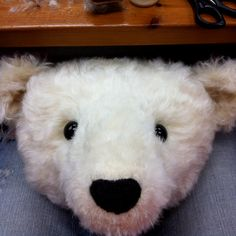 Making Polar Teddy Bear