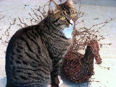 Suvikumpu: Risulintu Wood Art, Cats, Animals, Gardens, Blue Prints, Noel, Decorations, Wooden Art, Gatos