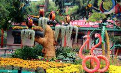 Zoo in Beijing