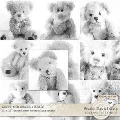 LIGHT AND SHADE : BEARS – MONOCHROME WATERCOLOUR PAPERS by Studio Dawn Inskip at Scrapbookgraphics  http://shop.scrapbookgraphics.com/Light-and-Shade-Bears-Monochrome-Watercolour-Papers.html