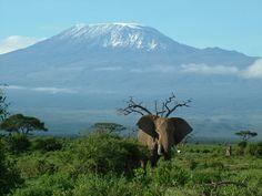 tansania landschaft im Tansania Reiseführer http://www.abenteurer.net/3035-tansania-reisefuehrer/