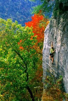 rock climbing in WV........... I totally want to try this sport. Sucky thing is, I live in a state that is flat. Looks like a road trip might be coming soon. ;) ~K