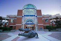 Ben Hill Griffin Stadium in Gainesville, FL. Go Gators!!