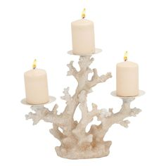 Beachcrest Home Ryhill Chelsea Candle Holder