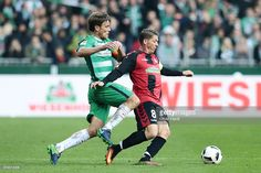Clemens Fritz (L) of Bremen and Mike Frantz (R) of Freiburg compete for the ball during the Bundesliga match between Werder Bremen and SC Freiburg at Weserstadion on October 29, 2016 in Bremen, Germany.