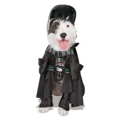 Don't mind that we addressed evil Darth Vader in this way. Once you own these Star Wars costumes, your dog will also become Darth Vader, Master Yoda or Princess Angry Birds Costumes, Pet Costumes For Dogs, Pet Halloween Costumes, Dog Halloween, War Dogs, Star Wars Trajes, Costume Star Wars, Costume Chien, Chien Halloween