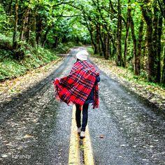 Pendleton Woolen Mills (@pendletonwm) • Instagram photos and videos - Pendleton motro robe blanket