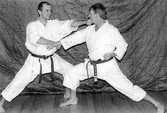 Nagashi zuki Karate