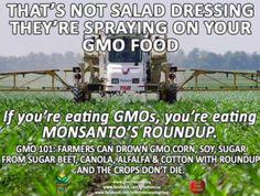 "Myth: GM farmers ""drown"" crops in ""dangerous"" glyphosate. Fact: Farmers use eye droppers 