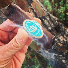 La Imperiosa deliciousness on this beautiful afternoon! @thecrownedheads #CYOP #cigarpicoftheday #cigarlovers #cigaraficionado #cigarporn #cigarsnob #nosmoking #loversoftheleaf #botl #sotl #botlazchapter #cigarians #cigarzen #cigarcartel #cigarsociety #cigarstagram