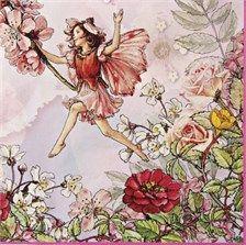 Garden Fairy Birthday Party Theme - Flower Fairy Meri Meri, Fairy Birthday Napkins & Plates, Fairy Birthday Party Supplies | settocelebrate.com