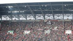 All info, news and stats relating to FC Augsburg in the Bundesliga season City Photo, Soccer, Fc Augsburg, Football, European Football, Soccer Ball, Futbol