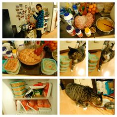 Easy Homemade Cat Food using ground chicken  vitamins - this looks seriously cheaper than the quality pet food at stores.