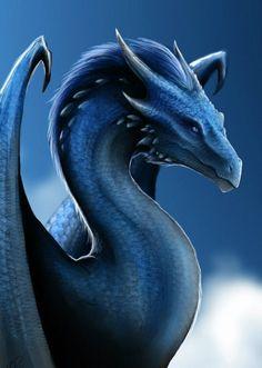 Saphira the blue dragon