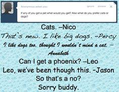 NICO LIKES CATS OMG IJG;SLEHJLRTOHJRST;HJ;THIJTR;HJ AND LEO AND HIS PHOENIX SIE;ODJRIGTOIH;STHIJ OMG IT'S HAWKES.