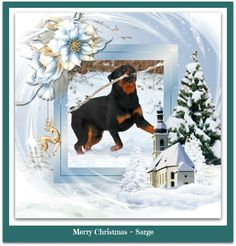 Rottweilers, Painting, Art, Art Background, Rottweiler, Painting Art, Kunst, Paintings, Performing Arts