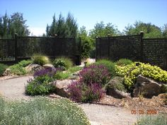 Steps to Go Through Before Residential Landscaping Texas Landscaping, Water Wise Landscaping, Succulent Landscaping, Front Yard Landscaping, Mulch Landscaping, Landscaping Ideas, Backyard Ideas, California Native Garden, California Drought