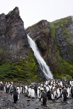 The most beautiful Waterfalls in the world - Page 12 - SkyscraperCity