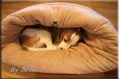 kuschliges, selbstgenähtes für Hunde