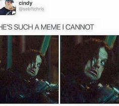 Bucky meme << I actually don't know what 'meme' means and am just repinning this bc of Sebastian Stans face
