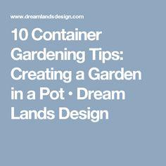 10 Container Gardening Tips: Creating a Garden in a Pot • Dream Lands Design