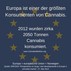 """Mal wieder eine Statistik zu dem Konsum von Cannabis in Europa.  Trotz der europaweiten Prohibitionspolitik ist Europa laut Statistik der """"European Monitoring Centre for Drugs and Drug Addiction (EMCDDA)"""" der größte Konsument von Cannabis.  Studien wie diese, müssten doch den Politikern zeigen, dass eine Prohibitionspolitik wie sie zurzeit durchgeführt wird nicht funktioniert und das langsam umgedacht werden sollte.  Cannabis Hanf Hemp Weed Marijuana Marihuana Medizin"""