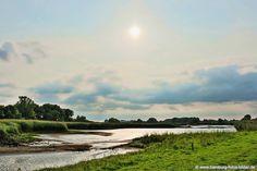 #Naturschutzgebiet #Zollenspieker an der #Elbe in den Vierlanden von #Hamburg