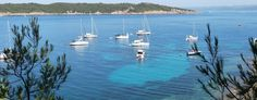 Parc national Port-Cros & Porquerolles | Scoop.it