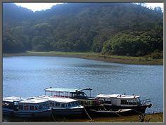 Lake Periyar and the Periyar Wildlife Reserve, Kerala