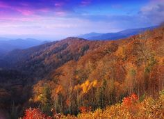 Fall Festivals in the N.C. Mountains