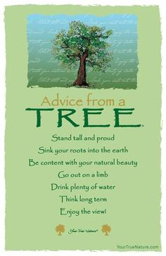 Beauty Advice from a Tree: Be content with your natural beauty. yourtruenature.com