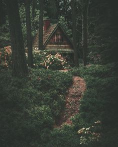 Witch Cottage, Cottage In The Woods, Cabins In The Woods, House In The Woods, Witch Aesthetic, Nature Aesthetic, Aesthetic Dark, Aesthetic Pics, Forest House