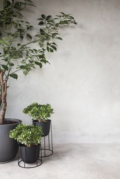 Powder coated steel vase WIRE POT by MENU design NORM ARCHITECTS