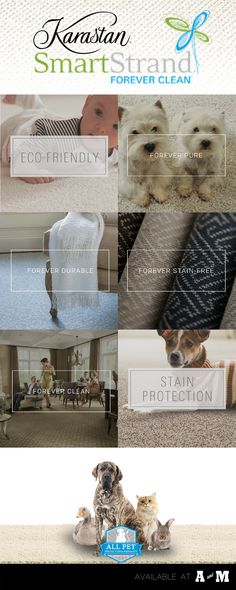 Karastan's SmartStrand Forever Clean carpets are just that: forever clean, forever stain-free, forever pure, and forever durable! Call A&M Flooring for more information! (559) 448-1000