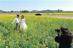 Taking photos in a field for spring wedding ideas.
