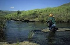 Image result for fly fishing africa #bass#trout#tigerfish#fish#fishing#fishingtrip#africa#travel#holiday#vacation#soul