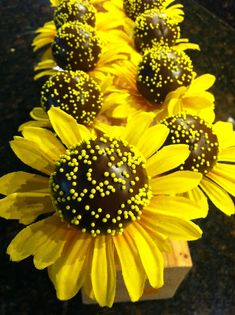 graduation cake pop ideas   Sunflower Cake Pops