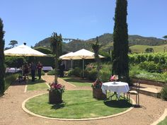 All good to go at our wedding venue for your most important day! Dreamy garden setting for the ceremony followed by canapes/drinks! #weddingvenue #littlepieceofitaly #touchofitaly #weddingceremony #weddingparty Unique Wedding Venues, Wedding Ceremony, Our Wedding, Canapes, To Go, Wedding Inspiration, Patio, Weddings, Drinks
