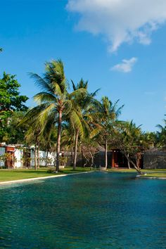 Samaya Seminyak is full of wonderful greenery and pretty pools