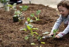 Join a community garden! : )