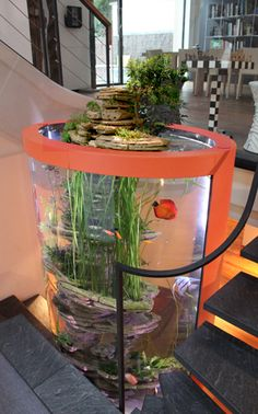 Awesome design, but Discus, Angel, and Gourami together?