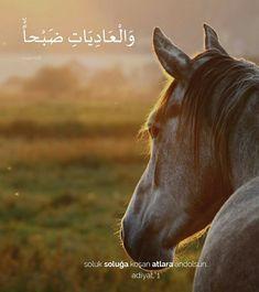 Persian Language, Learn Turkish Language, Appaloosa, Arabic Quotes, Islamic Quotes, Quran, True Love, Quotations, Poems