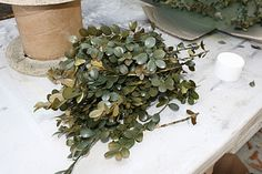 this tutorial is for how to make wreaths but of course it includes how to preserve boxwood cuttings. once you have those, make whatever you want, wreath, topiary, ball, anything :) also see this wiki article that tells you how to get a more natural green color instead of using spraypaint http://www.wikihow.com/Preserve-Boxwood-Cuttings