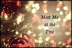 """This past week, I have been woken in the wee hours of the morning on several occasions with the words """"Meet me at the tree?"""" Stumbling out of bed, I made my way to our living room. My eyes blurry . Beautiful Things, Christmas Tree, Meet, Living Room, Holiday Decor, Teal Christmas Tree, Xmas Trees, Xmas Tree, Living Rooms"""